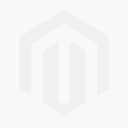 Disney Sofia the First Balloon